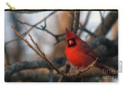 Northern Cardinal Red Beauty  Carry-all Pouch
