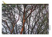 Winters Trees  Carry-all Pouch