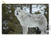 Wolf - Curiousity Carry-all Pouch