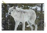 Wolf - Discovery Carry-all Pouch