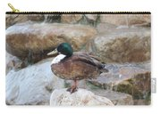 Wood Duck On Fountain Carry-all Pouch