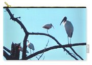 Wood Stork And Ibis Carry-all Pouch