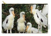 Wood Stork Young In Nest Carry-all Pouch