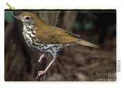 Wood Thrush Carry-all Pouch