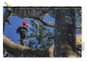 Woody Woodpecker Carry-all Pouch