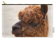 Woolly Alpaca Carry-all Pouch