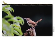 Wren - Carolina Wren - Bird Carry-all Pouch