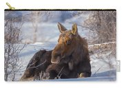 Wyoming Sunbathing Carry-all Pouch
