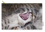 Yawning Kitten Carry-all Pouch