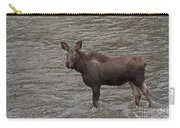 Yearling Moose In The Shoshone River   #1284 Carry-all Pouch