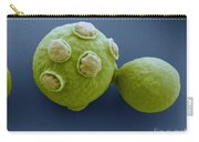 Yeast Cells Sem Carry-all Pouch