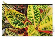 Yellow And Green Croton Carry-all Pouch