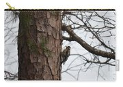 Yellow Bellied Sapsucker In The Pine Carry-all Pouch