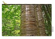 Yellow Birch Near La Chute In Forillon Np-qc Carry-all Pouch