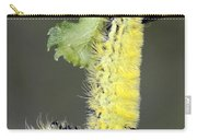 Yellow Caterpillar 1 Carry-all Pouch