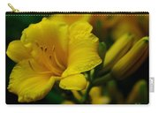 One Day Lily  Carry-all Pouch