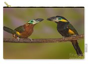 Yellow-eared Toucanet Pair Carry-all Pouch