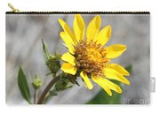 Yellow Flower - Carey's Balsamroot Carry-all Pouch