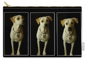 Yellow Lab Love Carry-all Pouch