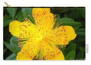 Yellow Lady Pins Carry-all Pouch
