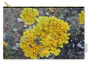 Yellow Lichen Carry-all Pouch
