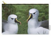 Yellow-nosed Albatross Pair Gough Island Carry-all Pouch