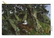 Yellow-nosed Albatrosses In Ferns Carry-all Pouch