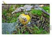 Yellow Patches Baby Mushroom - Amanita Muscaria Carry-all Pouch