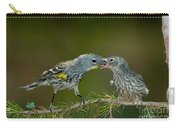 Yellow-rumped Warbler Feeding Young Carry-all Pouch