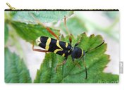 Yellow Stripped Beetle Carry-all Pouch