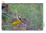 Yellow-throated Longclaw Carry-all Pouch