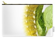 Yellow Wooly Bear Carry-all Pouch