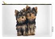 Yorkie Puppies Carry-all Pouch