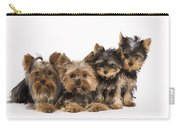 Yorkshire Terriers Carry-all Pouch
