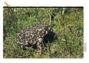 Yosemite Toad Bufo Canorus Carry-all Pouch