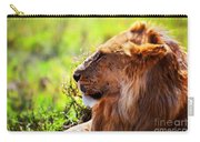 Young Adult Male Lion On Savanna. Safari In Serengeti Carry-all Pouch