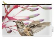 Young Allen's Hummingbird Carry-all Pouch