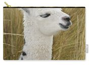 Young Alpaca Carry-all Pouch