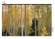 Young Aspens Carry-all Pouch