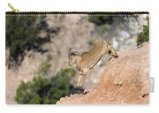 Young Auodad Sheep Descending The Canyon Carry-all Pouch