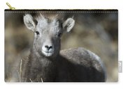 Young Bighorn Sheep Carry-all Pouch
