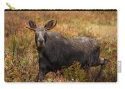 Young Bull Moose Being Aggressive Carry-all Pouch