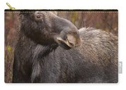 Young Bull Moose Carry-all Pouch