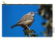 Young Cactus Wren Carry-all Pouch by Robert Bales