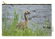 Young Canadian Goose Carry-all Pouch