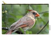 Young Cardinal Carry-all Pouch