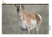 Young Doe Antelope Carry-all Pouch