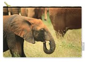 Young Elephant Carry-all Pouch