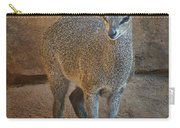 Young Female Klipspringer Carry-all Pouch