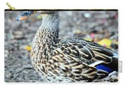Young Female Mallard Carry-all Pouch